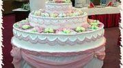 Девушка из торта